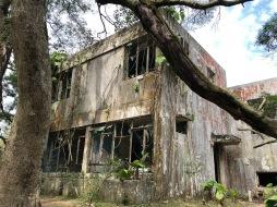 Jungle Dormitory